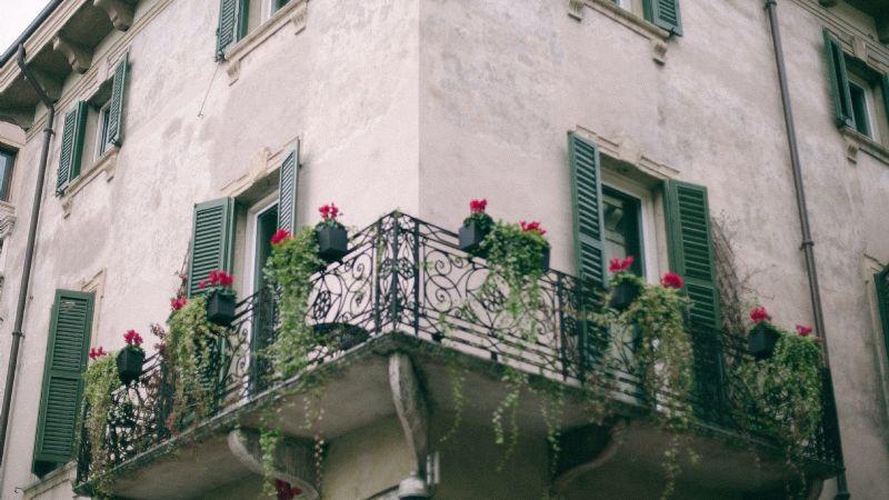 Suculentas colgantes: las mejores plantas para decorar balcones